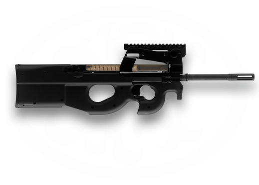 Ps90 For Sale >> PS90 5.7x28mm 16″ Standard Rifle - Build a Custom PS90
